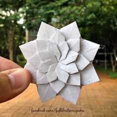 Origami Flower                                                                                                                                                                                 More