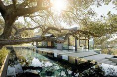 Oak Pass House in Beverly Hills by Walker Workshop