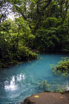 The sky blue river in Costa Rica: Rio Celeste. Click through to see more pictures and an aerial video http://mytanfeet.com/activities/tips-visiting-rio-celeste/