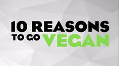 10 Reasons To Go Vegan Reasons To Go Vegan, Vegan Dishes, Vegan Food, Worlds Of Fun, Going Vegan, Animal Rights, How To Make, Veggie Food, Vegan Meals