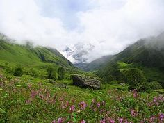 Valley of Flowers National Park, West Himalaya (Uttarakhand). The best time to visit is July-August-September. Best time to see maximum number of flowers is mid July to mid August. Requires trek of about 10.5 miles.