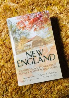 Okay sure—these types of stories are super-cheesy, and I find myself rolling my eyes sometimes. But, like a Hallmark movie, sometimes you just need something mindless where nothing really bad happens, so this is what I'm reading next! (This post contains affiliate links.) Fiction Books To Read, Currier And Ives, True Love, Book Worms, New England, Love Story, Bliss, Romantic, Movie