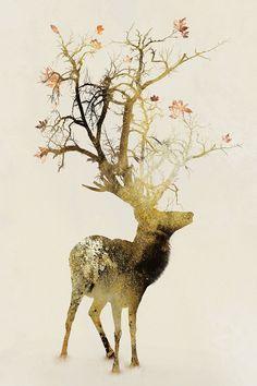 """Autumn"" by Daniel Taylor"