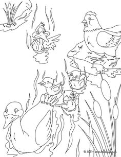 The Ugly Duckling coloring page