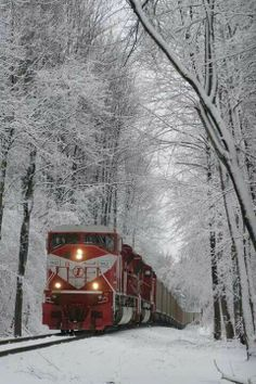 Beautiful Places in the world - Snow Train, Terre Haute, Indiana photo via maz (I feel like this is the closest I could get to the - Winter Szenen, Winter Magic, Winter Time, Train Tracks, Train Rides, Train Trip, Terre Haute Indiana, Old Trains, Snow Scenes