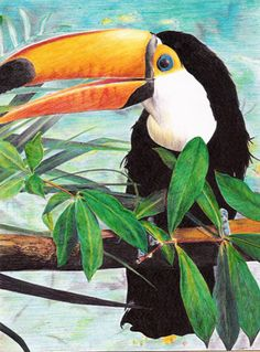 ilustracion a pluma by ~acapulco1402 on deviantART