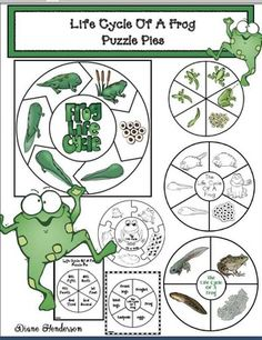 life cycle of a frog crafts, frog crafts, life cycle of a frog activities, Science Vocabulary, 1st Grade Science, Science Standards, Frog Activities, Lifecycle Of A Frog, Frog Life, Frog Crafts, Butterfly Life Cycle, Pond Life