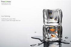 """Ice Cube"" Fish Tank"