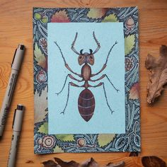 Tiny but incredible strong 🍂 #ant #drawing #doodle #illustration #illustrationartists #botanicaldrawing #botanicalillustration #natureinspiredart #nature #naturelovers #spiritanimals #recycledpaper #muurahainen #piirros #kuvitus #luonto #luontoinspiroi #metsä