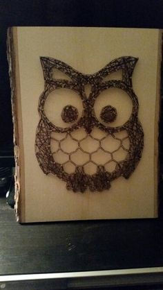 Owl string art. Cost at the most about $25 to make depending on your materials. Got the pattern on etsy. Easy DIY