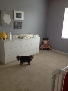 Project Nursery - Changing table and big stuffed giraffe (and kitten sister Xerox)