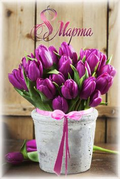 Яндекс.Фотки Funny Happy Birthday Images, Gifs, Beautiful Flowers Wallpapers, 8th Of March, Flower Images, Flower Wallpaper, Happy Day, Spring Time, Diy And Crafts