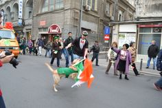 St. Patrick's Day Parade in Bucharest, March 16 2014