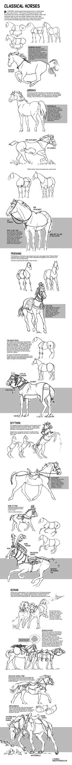 How to Draw Horses of the Classical World by sketcherjak.devia... on @deviantART