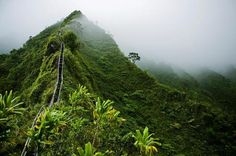 DO NOT!! Attempt to climb here! Recent heavy rains in Feb 2015 have destroyed a major part of the stairs making it impossible to complete the hike. Too many ppl have been rescued from falls off this mountain. Very wet & muddy unstable terrains