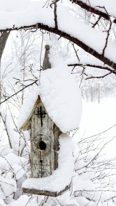 A little bird house is snow capped in winter white.