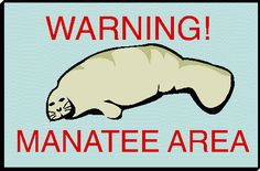 Manatee for jacksonville landing page