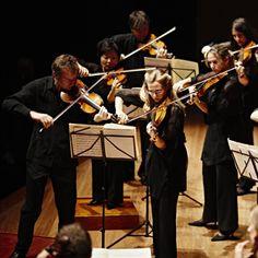 Australian Chamber Orchestra © Jon Frank #AustralianChamberOrchestra
