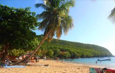 Il existe en Martinique deux petites plages coupées du monde, l'une de sable noire, l'autre de sable blond…