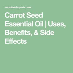 Carrot Seed Essential Oil | Uses, Benefits, & Side Effects