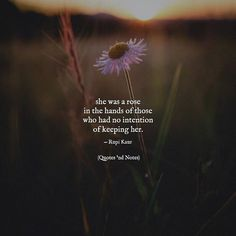 She was a rose in the hands of those who had no intention of keeping her.  Rupi Kaur via (http://ift.tt/2ssY6iG)