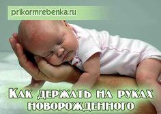 Как держать на руках новорожденного Lil Baby, My Sunshine, Kids And Parenting, Pregnancy, Bunny, Motivation, Children, Books, Kids