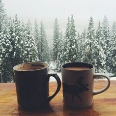 love Christmas snow winter couple holiday xmas hot chocolate friends Christmas Eve coffee view forest mug tea cup december mountain snowflakes pine beautiful view hot cocoa winter time pine tree christmas mug mountain hut snow pine Winter Gif, Winter Love, Winter Is Coming, Winter Snow, Cozy Winter, Winter Light, Fall Winter, Noel Christmas, Winter Christmas