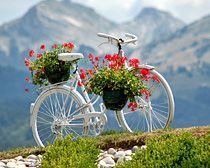 Una bicicleta dañada o que ya nadie usa puede ser un excelente elemento decorativo para el jardín, la terraza e incluso, aceras, plazas y p. Bicycle Basket, Old Bicycle, Bicycle Art, Bicycle Decor, Photo Velo, Bike Planter, Petal Pushers, Vintage Bicycles, Flower Basket