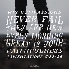 Because of the Lord's great love we are not consumed, for his compassions never fail. They are new every morning; great is your faithfulness. -Lamentations 3:22-23