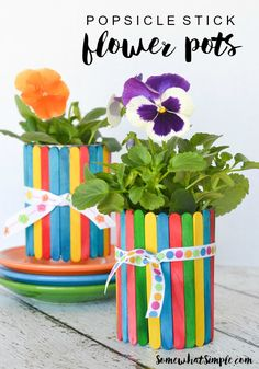 With just a few basic craft supplies, make these colorful Popsicle stick flower pots with the kids! A super cute gift idea for Mother's Day or Teacher Appreciation!