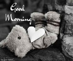 teddy-bear-black-and-white-image Good Morning Beautiful Quotes, Cute Good Morning, Good Morning Quotes, Teddy Bear Images, Teddy Bear Pictures, Good Morning Greetings, White Image, First Love, Gd Mrng