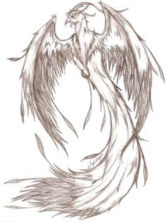 Phoenix - pencil Sketch by *MaverickTears on deviantART Ok to use for tattoo's per artist. Do not copy to webpages or other media.