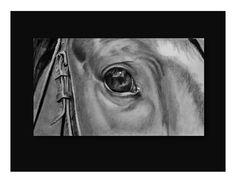 realistic, pencil, graphite, horse