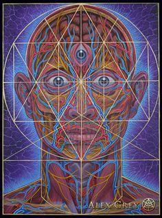 Human Geometry - Alex Grey                                                                                                                                                                                 Mais