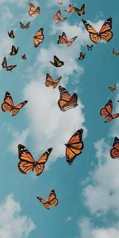 Wallpaper Pastel, Butterfly Wallpaper Iphone, Cute Patterns Wallpaper, Trippy Wallpaper, Summer Wallpaper, Iphone Background Wallpaper, Retro Wallpaper, Iphone Wallpaper With Words, Beauty Iphone Wallpaper