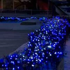 blue christmas net lights christmas net lights holiday lights blue christmas christmas time