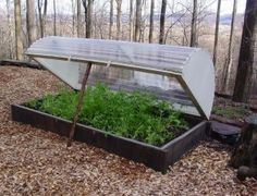 Raised Bed Hoop house made of plywood and corrugated polycarbonate plastic