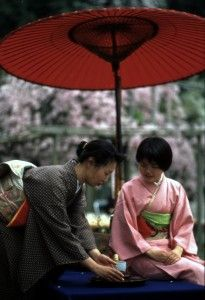 A tea ceremony moment.under umbrella お茶会 Sun Umbrella, Under My Umbrella, Paper Umbrellas, Japanese Tea Ceremony, No Rain, Hidden Treasures, Rising Sun, Japanese Culture, Wabi Sabi