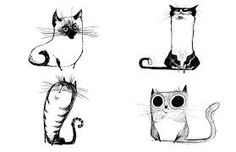 Image result for cat drawings