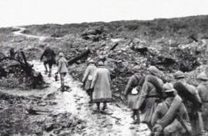 It was 100 years ago, the hell of the battle of Verdun - Archy World News World War One, First World, Bataille De Verdun, Deadly Animals, Rare Photos, Wwi, First Photo, Warfare, Documentaries