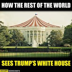 Time to shut down this circus and send the clowns home!