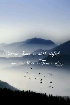 #dream #baddream #flyaway #fly #nature