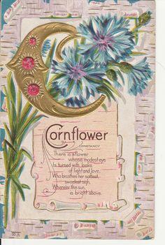 Alphabet Greeting C letter Cornflower Constancy Flower Jewels Embossed Postcard