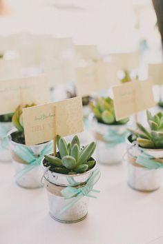 "1"" succulents wedding - Google Search"