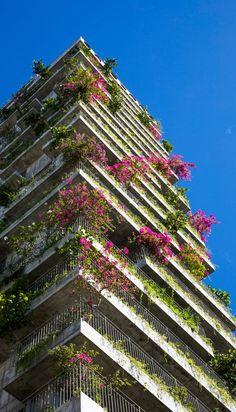 Tropical plants cover the balconies of Chicland hotel in Vietnam Tropische Pflanzen bedecken die Balkone des Hotels Chicland in Vietnam Bamboo Architecture, Architecture Design, Building Architecture, Beautiful Architecture, Tropical Garden, Tropical Plants, Vertical Forest, Vietnam Hotels, Pleasant View