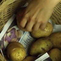L'Astuce de Maraîcher Pour Conserver les Pommes de Terre Plus Longtemps.