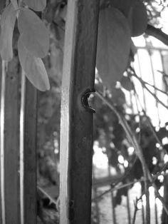 """Σημάδι από σφαίρα στα κάγκελα του """"Μοργκεντάου"""" από το μπλόκο του Βύρωνα. photo: George Tzaninis Windows, Window, Ramen"""