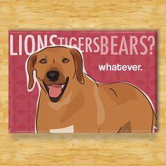 Rhodesian Ridgeback Dog Magnet  Lions Tigers Bears by PopDoggie