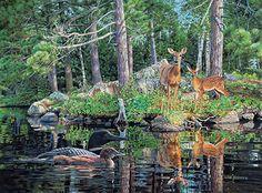 Neighbors by Jim Kasper : Wild Wings