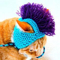 https://www.etsy.com/listing/83552853/mohawk-cat-hat-aqua-and-purple-hand-knit?ga_order=most_relevant
